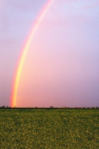 How To See The Silver Lining In Your Situation
