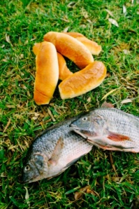 A Two Piece Fish Dinner. Christian Blog. Sandra Hersey